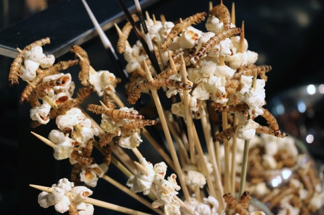 Popcorn skewers topped with fried worms (Credit: Dallas Zoo)