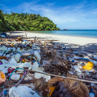 SIMPLE TRUTH: Oceans generate every second breath we take, and 8 million tons of plastic populate oceans annually.