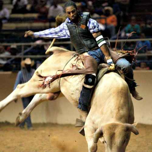 AfAmRodeoGuideliveDOTcom